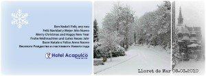 Felices Fiestas y Feliz 2013