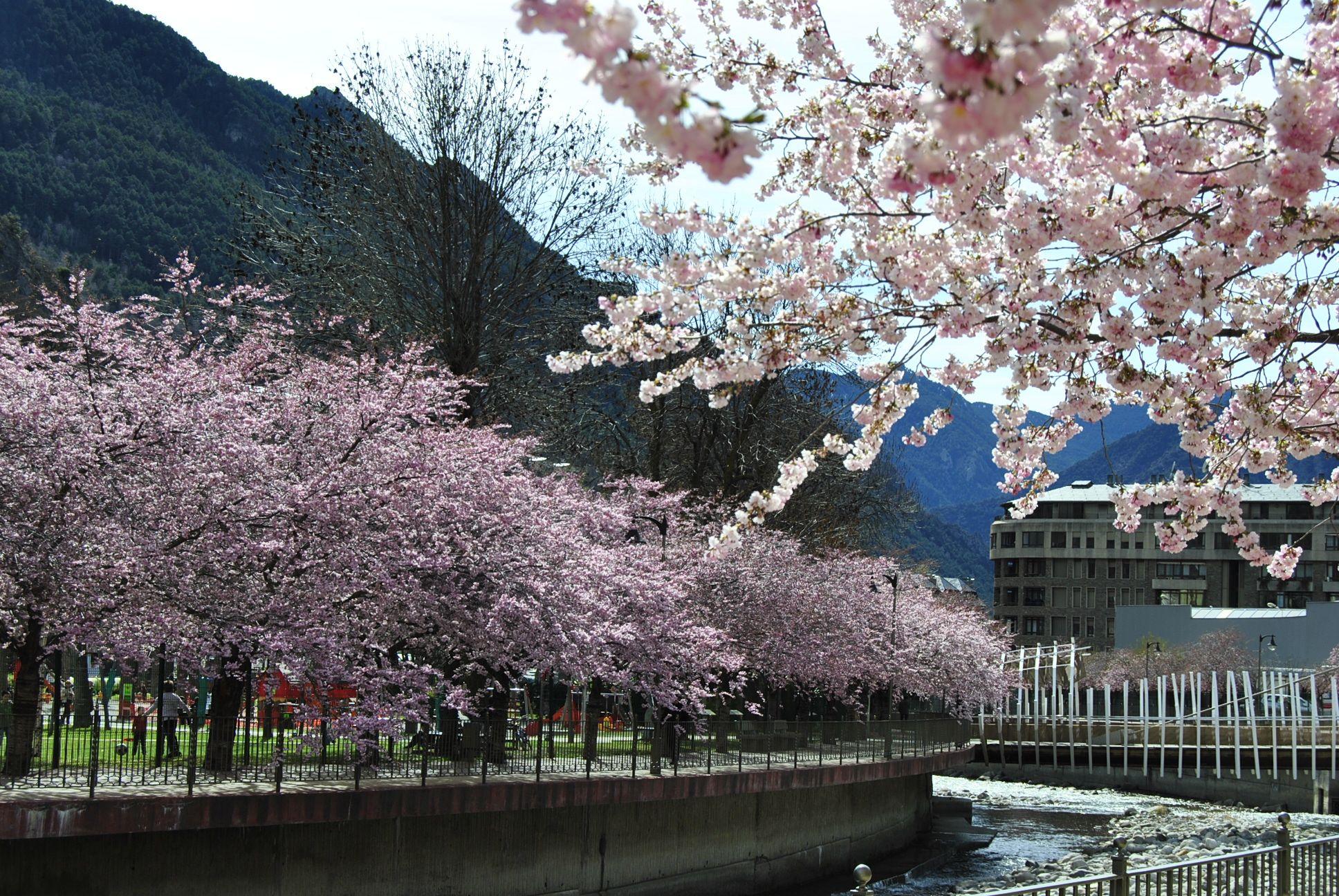 Andorra La Vella Andorra  City pictures : Andorra la Vella Andorra