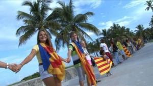 Un-centenar-de-catalanes-forma_54379913739_53699622600_601_341